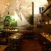 Restaurace v Praze